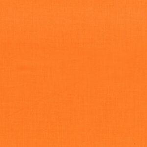 Mondmasker Carrot