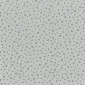 Mondmasker Silver Spots