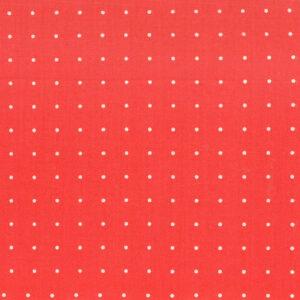 Mondmasker White Polka Dots Red